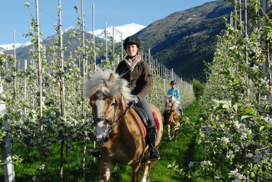 Ausritt Südtirol
