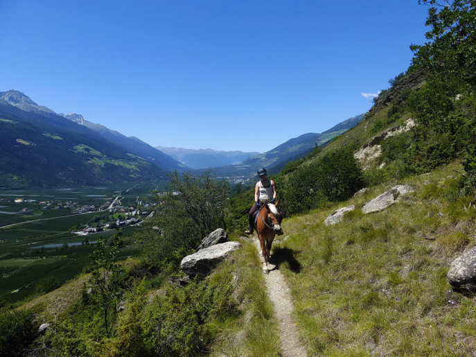 Ausritt Südtirol 1