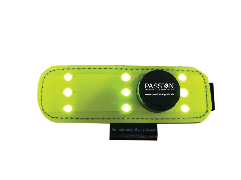 Passion LED-Leuchtbinde